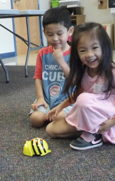 Gifted students with Bee-Bot